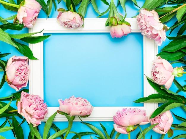 Белая рамка в окружении красивых розовых пионов на синем фоне