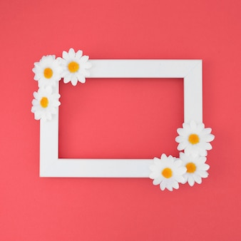 White frame with daisies