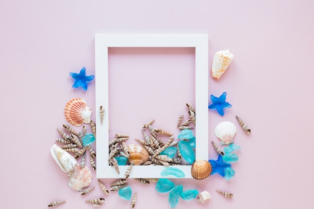 White frame with sea shells