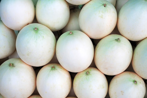 White fresh cantaloupe melon background