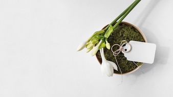 White fresh flower; wedding rings with blank tag on moss bowl against white background