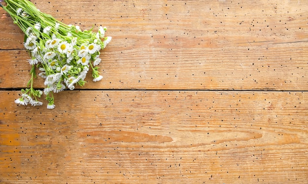 White garden small chamomile flowers on wooden background.
