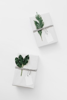 White gift boxes with green plants