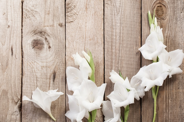 White gladiolus on wooden surface