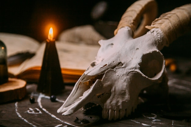 White goat scull with horns, open old book, black candles on witch table.day of the dead concept