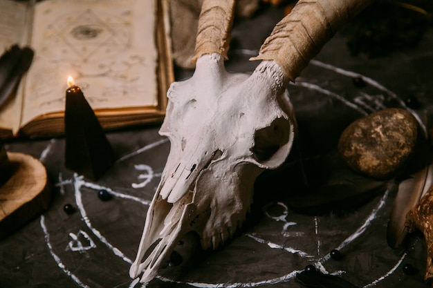 White goat scull with horns, open old book, black candles on witch table.