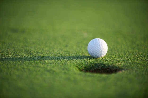 White golf ball on green field close up