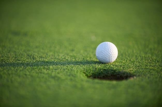 緑の野原に白いゴルフボールをクローズアップ