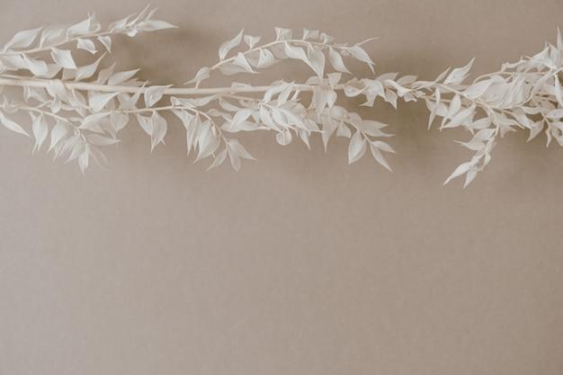 중립 파스텔 베이지 색 배경에 흰색 잔디 지점입니다.