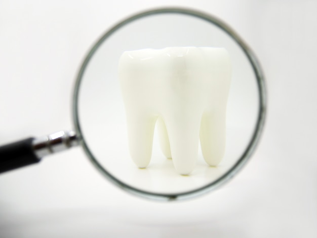 White healthy human tooth isolated with magnifying glass