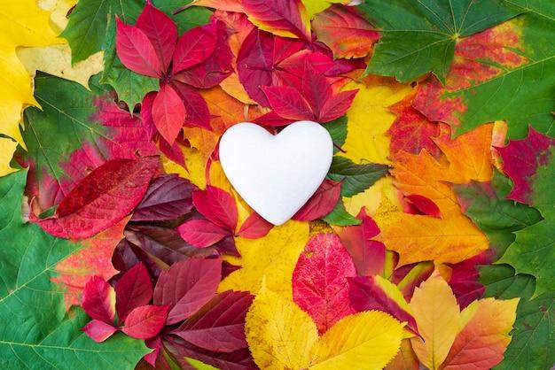 秋の色とりどりの葉に白いハート。ハートのシンボルを開き、スペースをコピーします。