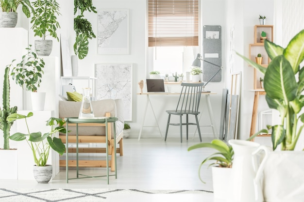 White home office interior with fresh green plants, grey chair standing by a wooden desk with laptop and window with blinds