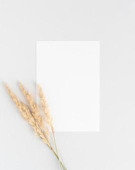 Плоский макет белого пригласительного билета с тремя сухими ветками пампаса
