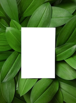 葉の背景に白い招待カードのモックアップ