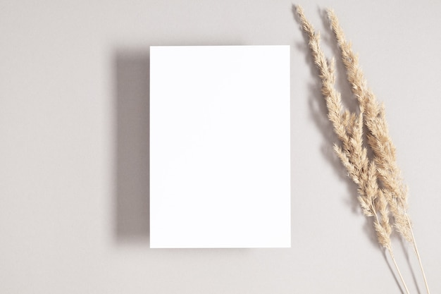 White invitation card mockup with dried grass on gray background flat lay top view copy space