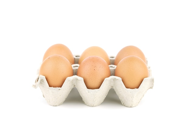 White isolated eggs in carton tray