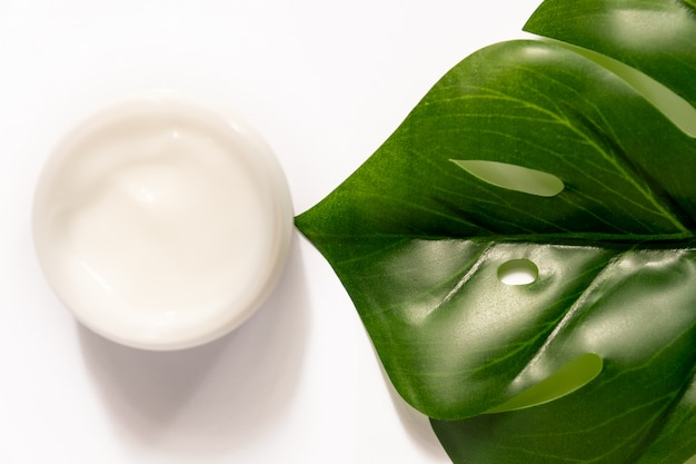 White jar of face cream on tropical palm green leaf.