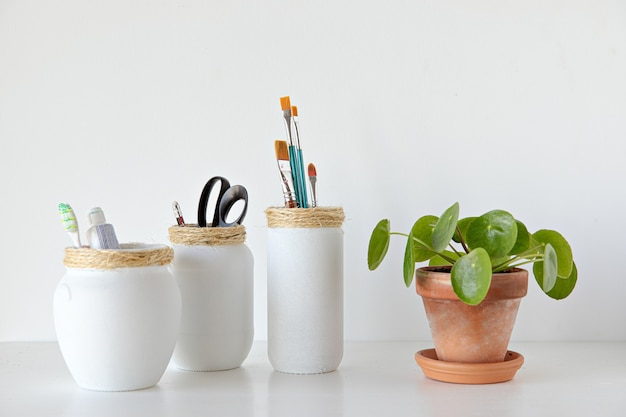 White jars craft made with pilea plant on white background minimal style