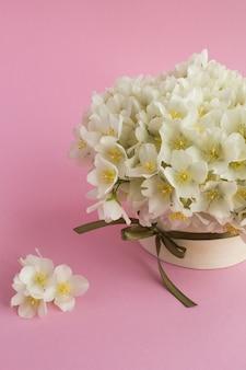 ピンクのギフトボックスに白いジャスミンの花