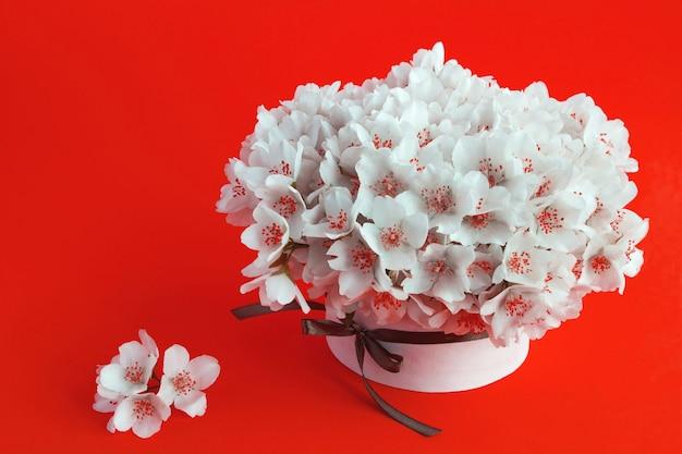 Белые цветы жасмина в подарочной коробке на красном