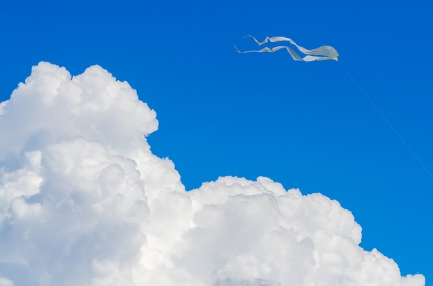 White kite in the blue sky with a big cloud