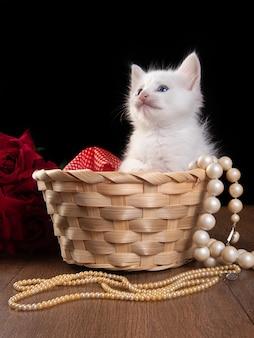 Белый котенок, белый котенок, играющий в соломенной корзине на деревянном столе и жемчужные ожерелья.