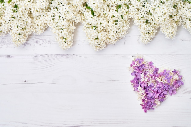White lilac flowers border on white background. heart from lilac flowers.