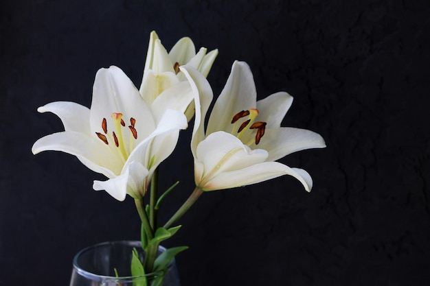 White lily flowers bouquet on black background.