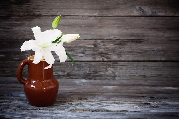 White lily on wooden table
