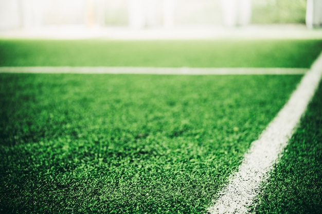 White line on green grass sport field for sport concept