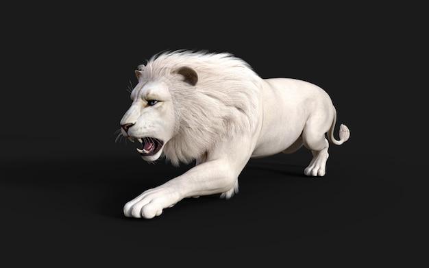 Белый лев действует и позы, изолированные на темно-черном фоне с обтравочным контуром король-лев