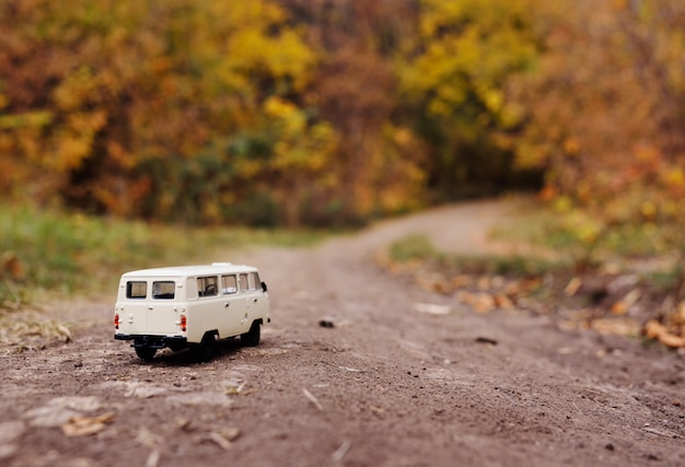 White little toy car rides on the road of autumn yellow trees.