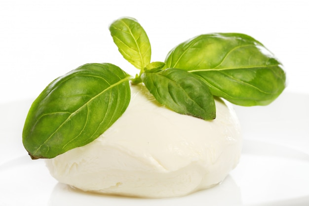 White mozarella cheese with mint leaves