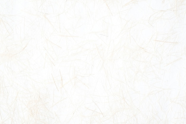 White mullberry paper textured background, detail close-up