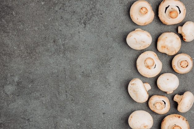 White mushrooms on a gray textured background. top view. space for text