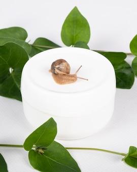달팽이 점액이 함유된 흰색 천연 화장품 크림.