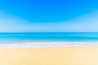 White nature beach tropical landscape