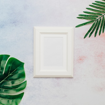 White nice frame with tropical leaves