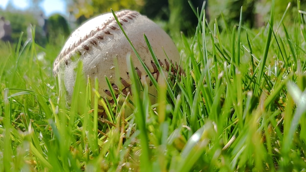 White old baseball ball on fresh green grass with copy space closeup. american sports baseball game.