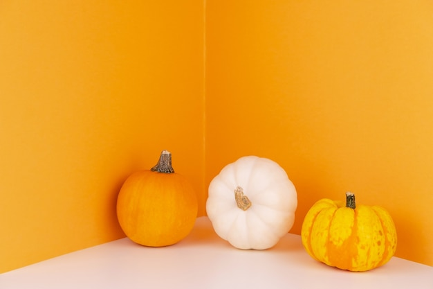 White and orange heirloom pumpkins next to wall