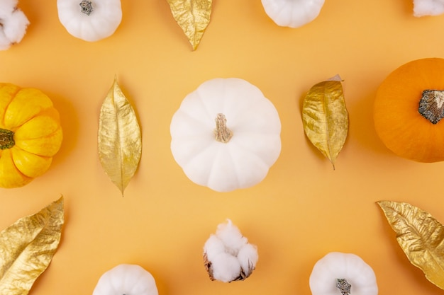 White and orange heirloom pumpkins with cotton flower