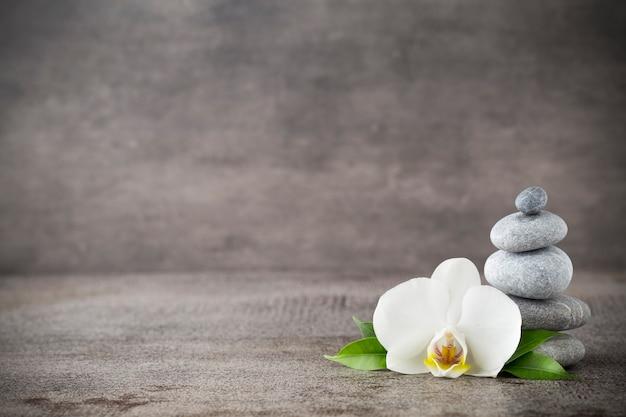 회색 배경에 흰색 난초와 스파 돌.