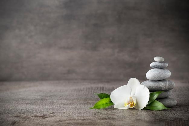 灰色の背景に白い蘭とスパの石。
