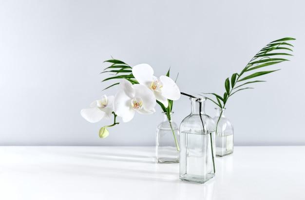 テーブルトップの花瓶に白い蘭の花とヤシの葉、テキスト用のスペースと正面図の構成