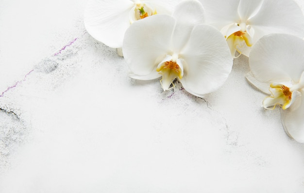 White orchid flowers on a white marble background