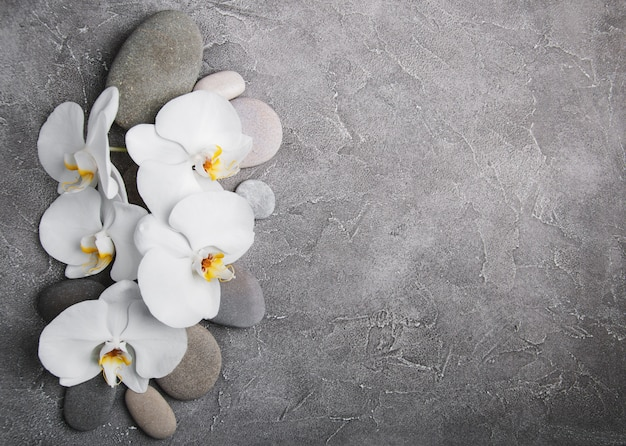 White orchids and massage stones