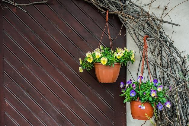 교수형 냄비에 흰색 팬지 꽃