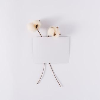 白い背景に2本の柔らかい綿の棒が付いている白い紙カードノート自然なコピースペース