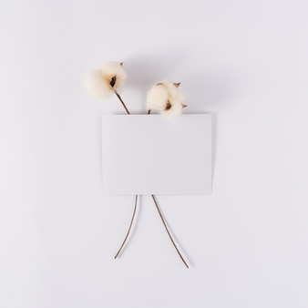 White paper card note with two soft cotton sticks on white background natural copy space