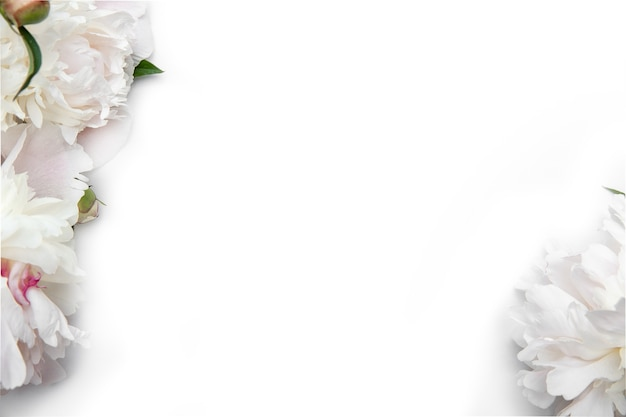 牡丹とホワイトペーパーカード